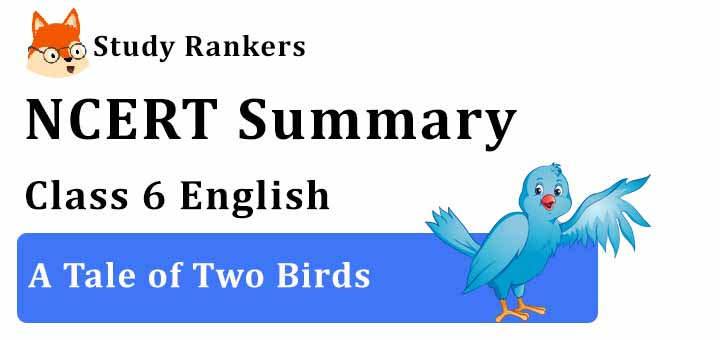 A Tale of Two Birds Class 6 English Summary