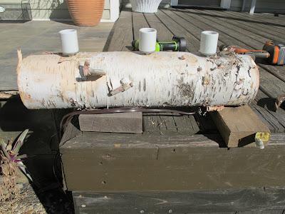 Christie Chase: #581...birch log lamp