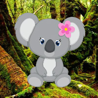 WowEscape Save The Baby Koala Escape