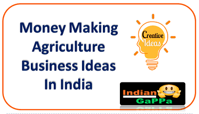 Money-Making-Agriculture-Business-Ideas-In-India
