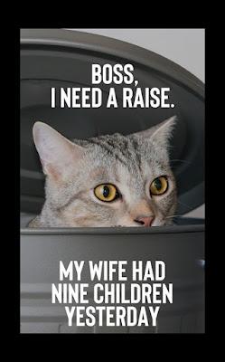 Boss I need a raise.