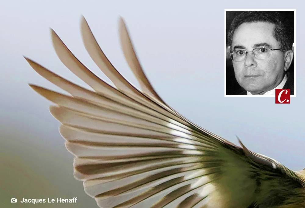 literatura paraibana jurandy moura poesia orris soares cariri