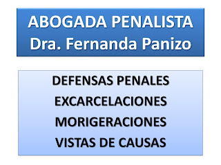 abogado defensor penal