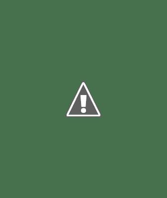 """Une fois les contacts ajoutés, les gestionnaires de Pages peuvent commencer à créer des messages électroniques promotionnels dans l'application """"Pages""""."""