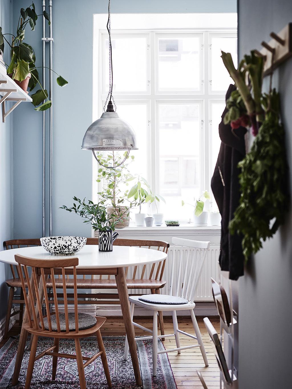 Amenajare cu multe plante de interior ntr o garsonier de for Plante de interior