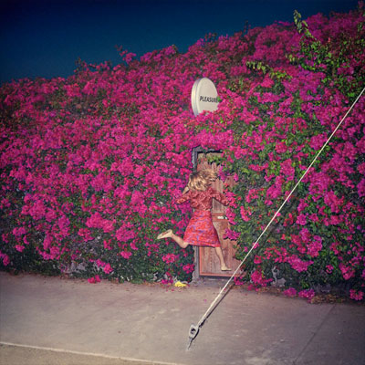 The 10 Best Album Cover Artworks of 2017: 10. Feist - Pleasure