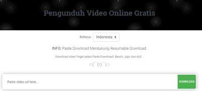 video pinterest paste download