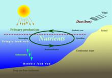 nutrien-www.healthnote25.com