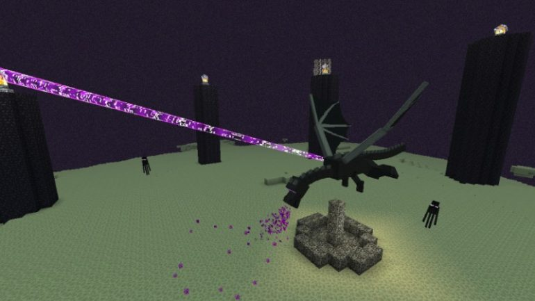 How to kill the Enderdragon