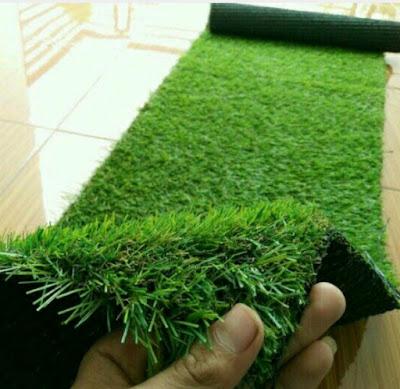 contoh rumput sintetis