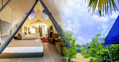 Safari Camp Staycation with The Orchard Wellness Resort