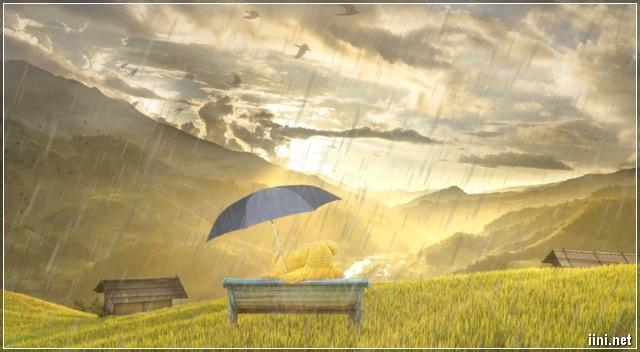 cơn mưa thu về