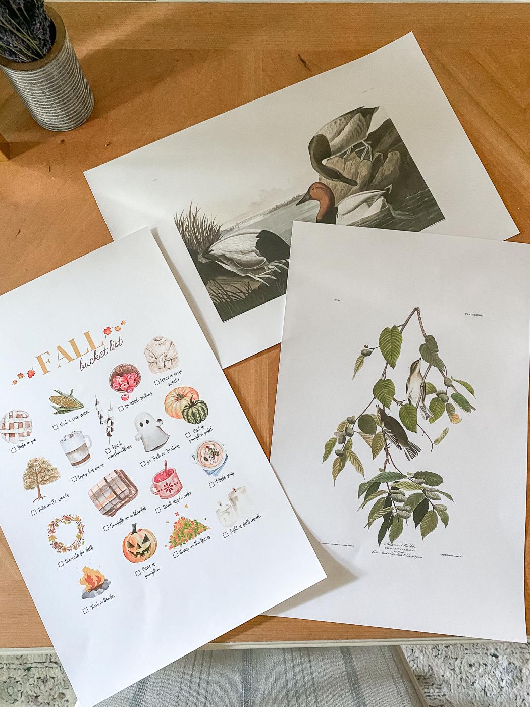 free fall printable wall art, fall printable art, fall printable decor, free audubon printable, fall bucket list printable