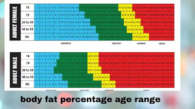 how to calculate body fat percentage 2020