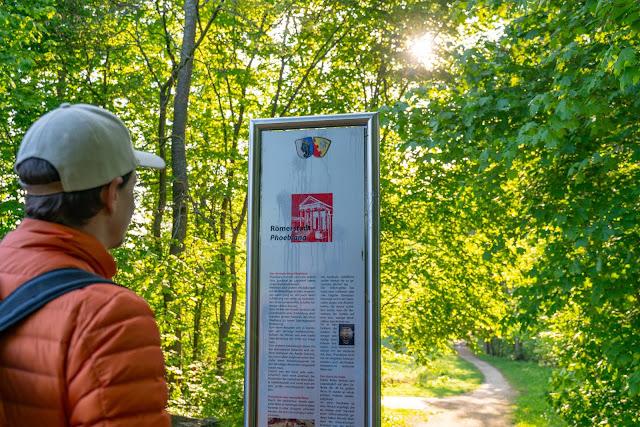 Premiumwanderweg DonAUwald | Etappe 3 von Gundelfingen nach Dillingen 07