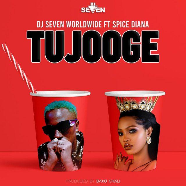AUDIO | Dj Seven Worldwide Ft Spice Diana - Tujooge (Amapiano) | Mp3 DOWNLOAD
