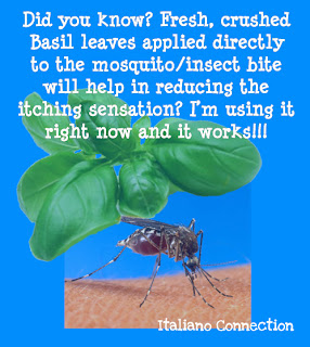 Basil Leaves stop Mosquito bite itch