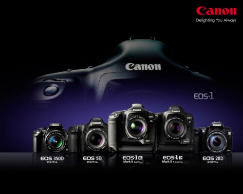 Perbedaan dan Persamaan Kamera SLR dengan Kamera DSLR