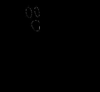 Hantu makhluk gaib
