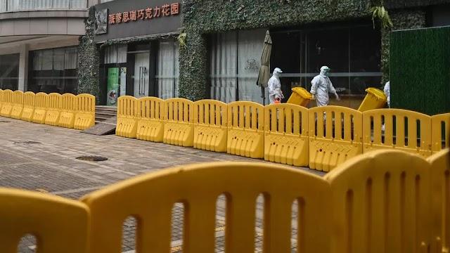 The WHO team to start Wuhan virus probe under global glare