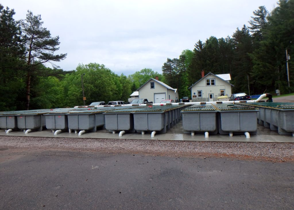 Windswept Adventure: State Fish Hatchery In Chateaugay, NY - Part 1