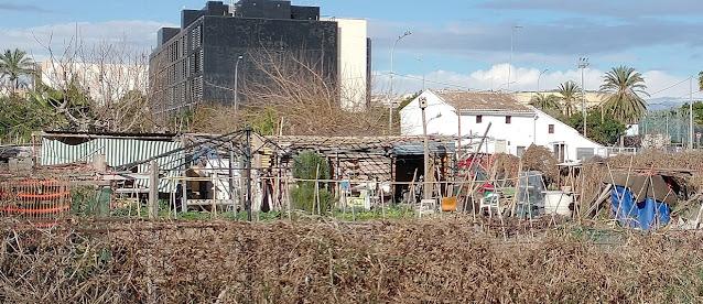Imagen 19: En Benimaclet sigue las mismas pautas que en otras ciudades y pueblos de la Comunidad Valenciana: Masías, casas y tierras ocupadas, chabolas construidas en solares.