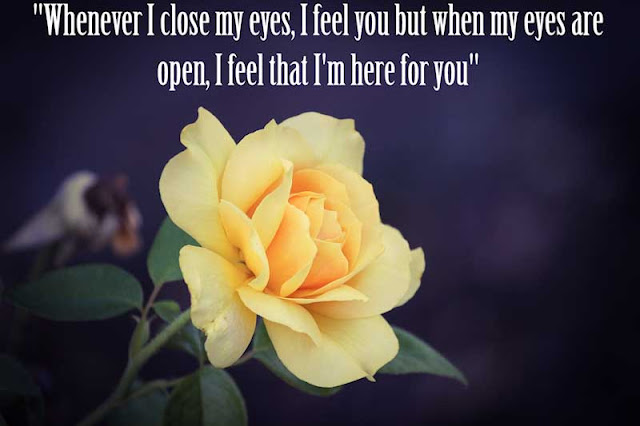 Images with love quotes
