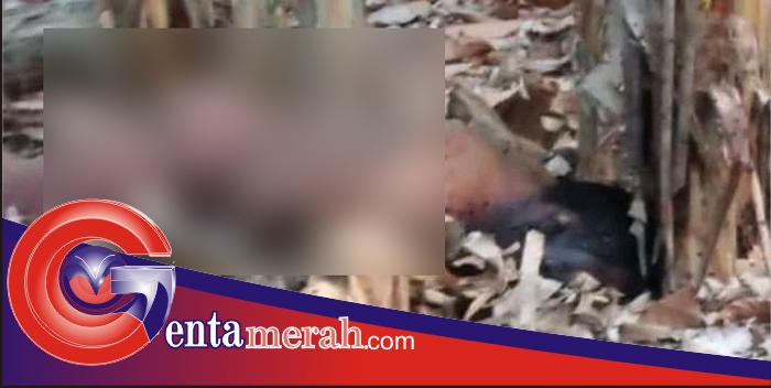 Sebulan Tinggalkan Rumah, Pria Asal Pringsewu Ditemukan Tewas Tanpa Busana di Padangcermin