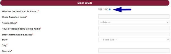 pnb minor details form