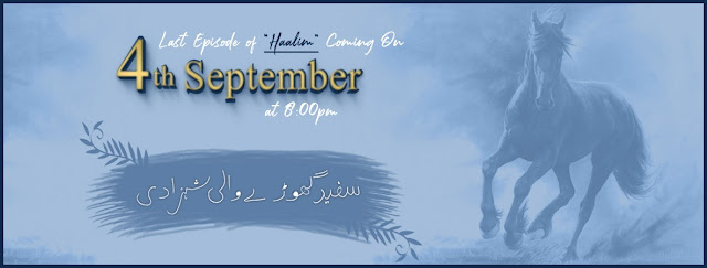 Haalim Episode 23 The Last Chapter by Nimra Ahmed Read Online