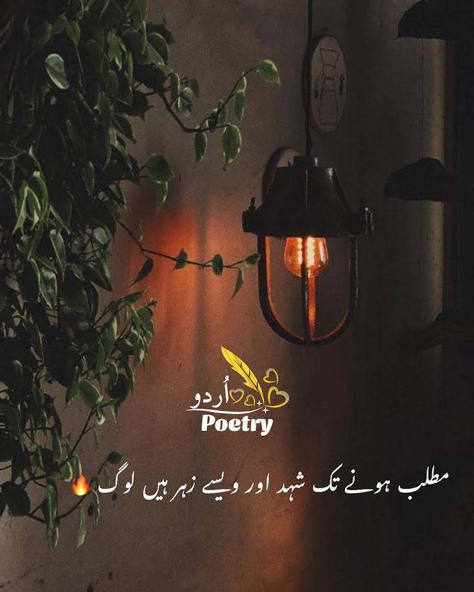 Urdu Poetry - مطلب ہونے تک شہد اور ویسے زہر ہیں لوگ