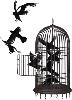Bird cage and crows