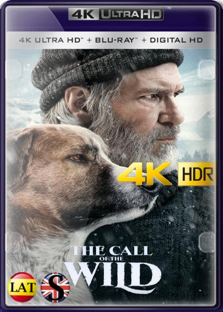 El Llamado Salvaje (2020) 4K UHD HDR LATINO/INGLES