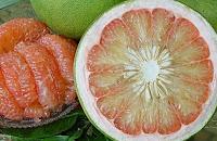 5 Makanan yang Ampuh Atasi Perut Kembung