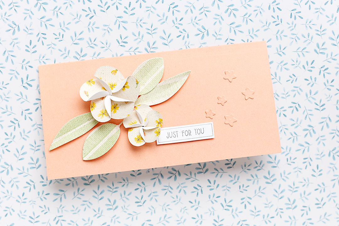 Card with peach paper and lovely frangipane flowers and leaves giftwrapping Moda Scrap Sandra Dietrich mojosanti