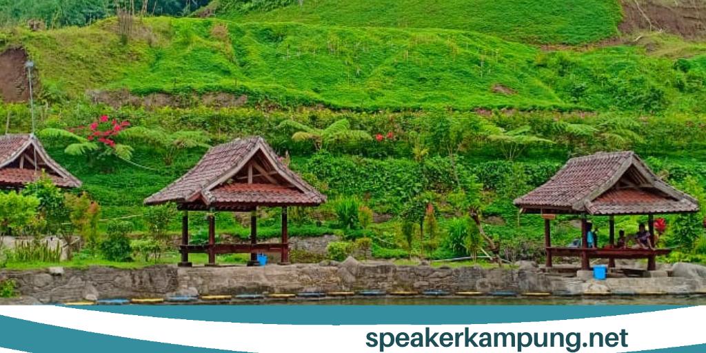 Wisata Hipnotis Di Lombok Timur Speaker Kampung