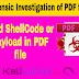peepdf -- PDF File Forensic Investigation