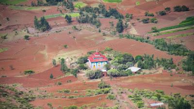 Hutan Gereja Ethiopia