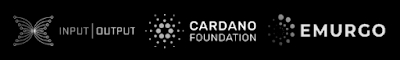Cardano blockchain supporting entities