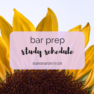 Bar exam study schedule. How many hours should I study each day for the Bar exam? How to study for the Bar exam. When to study for the Bar exam. Barbri schedule. Themis schedule. Texas Bar Exam 3 month study plan. 3L Bar prep. bar exam tips. bar exam help | brazenandbrunette.com