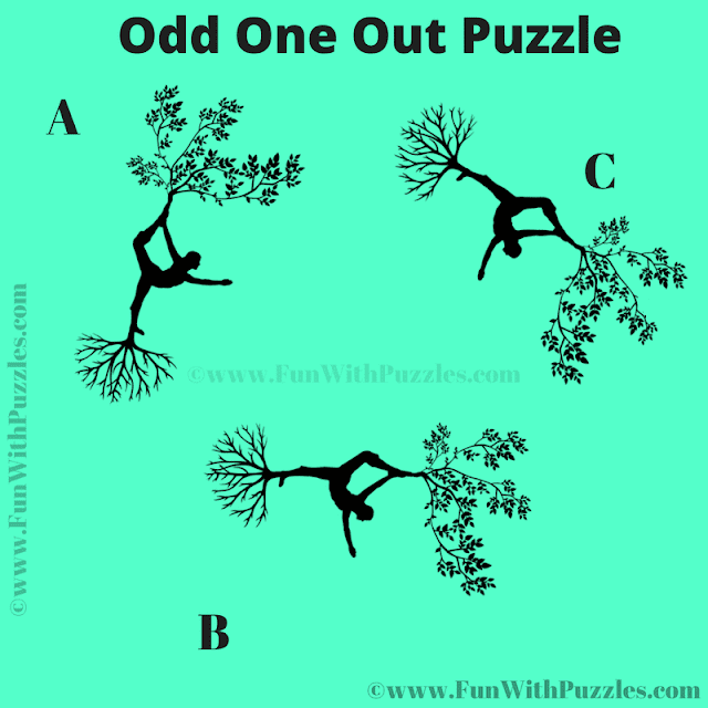 Can you Eye Test find the Odd One Out in this Puzzle Question?