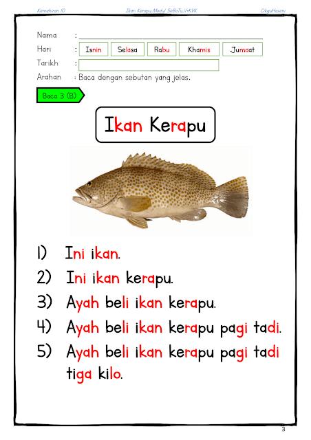 Modul SEBATU VKVK [Ikan kerapu]_3