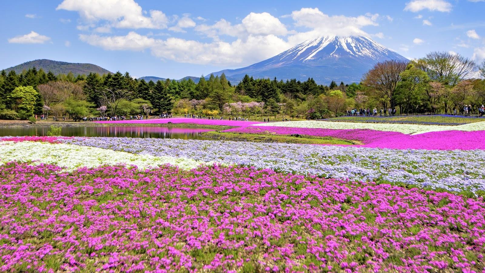 Download Japanese Landscapes, Tema per Windows 10