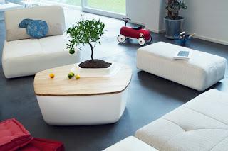 Mesa de madera con bonsai integrado