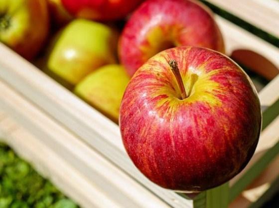 Diligent Apple Consumption