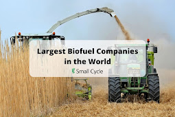 largest biofuel companies in the world