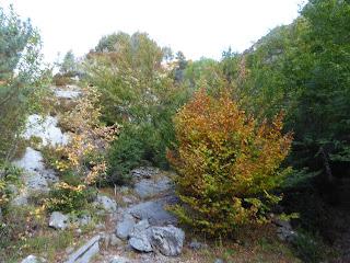 El otoño comienza a hacerse presente