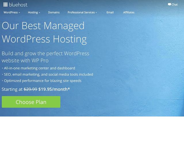 Bluehost-WP-Pro