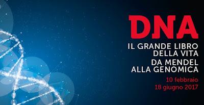 Mostra del DNA a Roma.