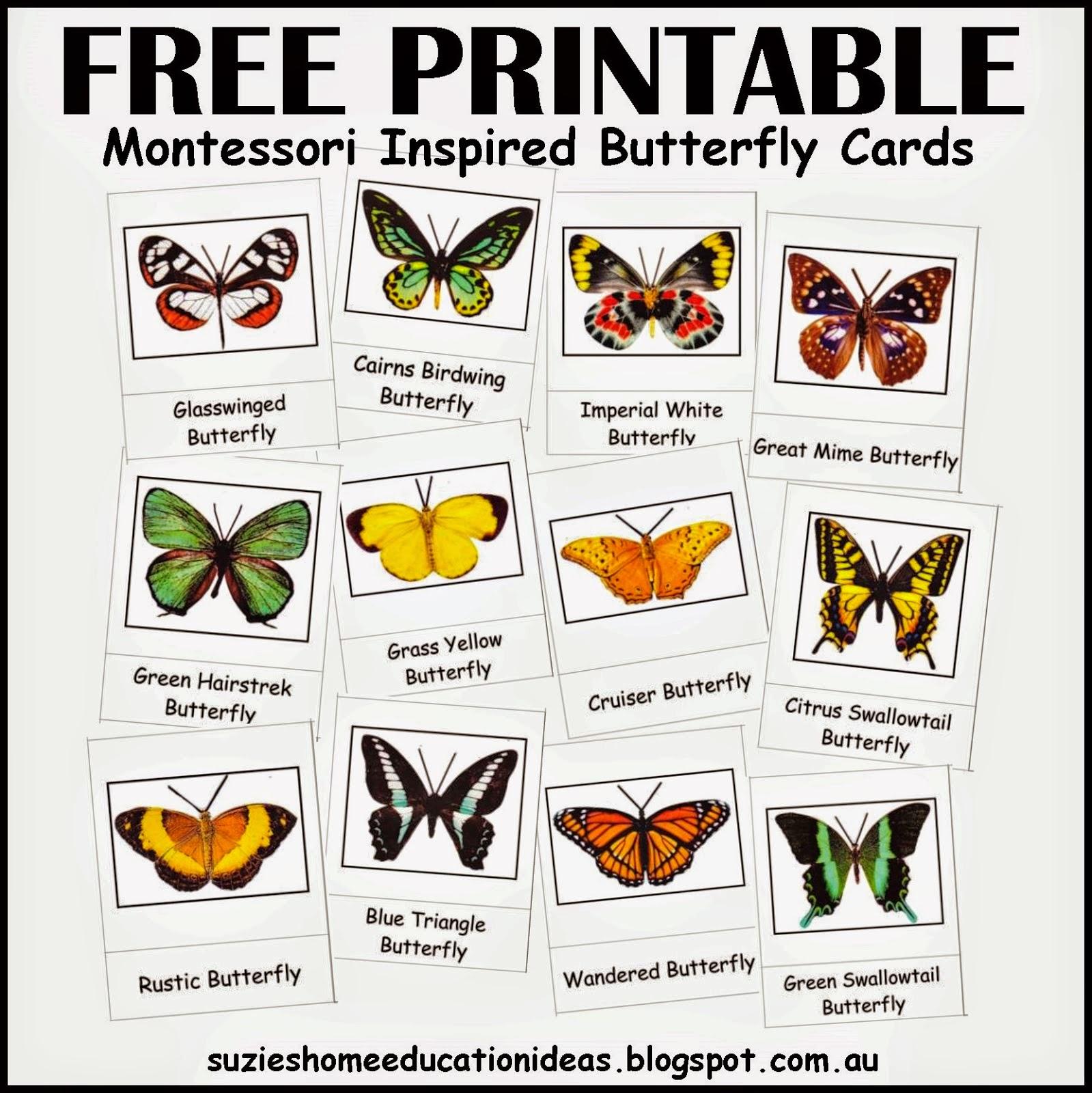 Montessori Nature Free Spring Printables Resources For